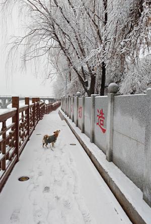 sundasheng-冬天的味道.jpg