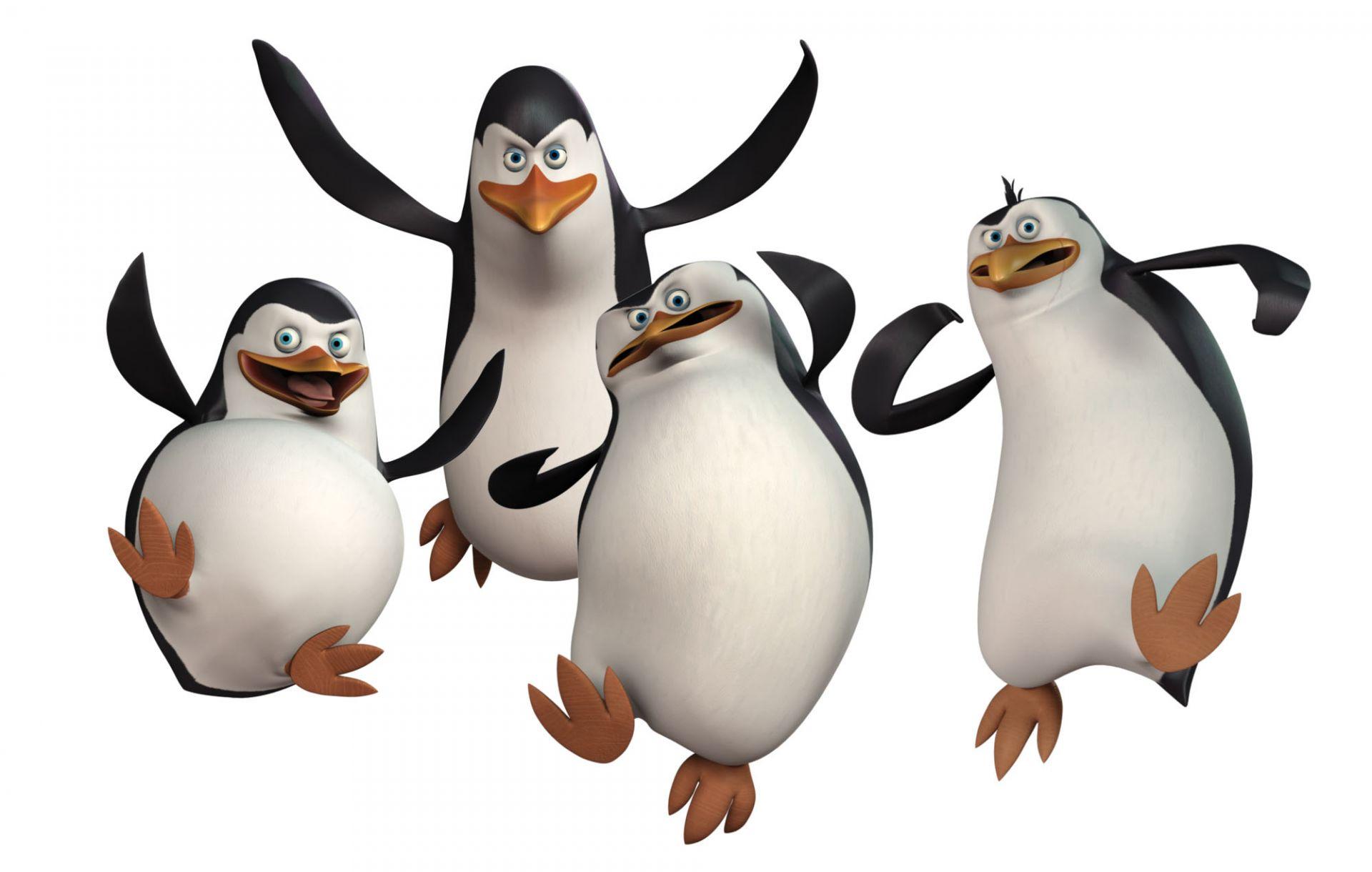 企鹅是《马达加斯加